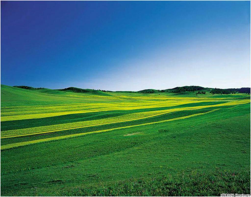 大草原高清壁纸-春暖花开高清壁纸|风景壁纸厂家|手机高清壁纸大全